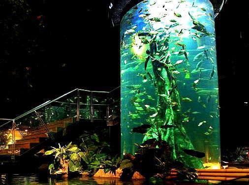 Aquaria KLCC, Kuala Lumpur, Malaysia - Underwater Park in Kuala Lumpur